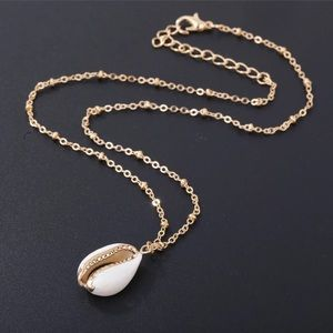 Jewelry - NEW Cowrie Shell Necklace